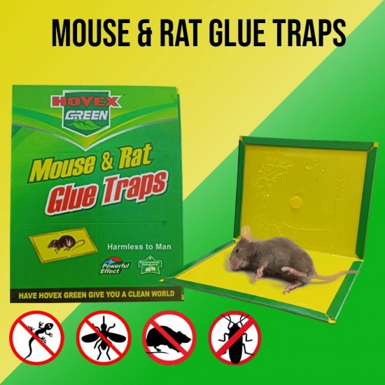 Mouse And Rat Glue Trap Board